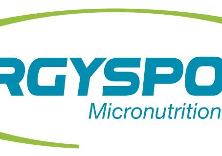 Partenariat : Code promo Ergysport