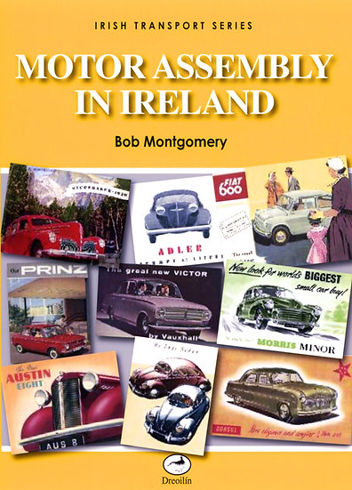 MOTOR ASSEMBLY IN IRELAND