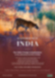 Trade - A4 window posters - 2020 India T