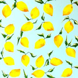 Lemons For Nancy