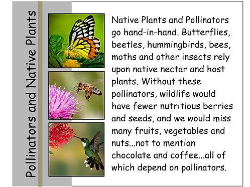 "Simple Sign 8"" x 10"" Pollinators"