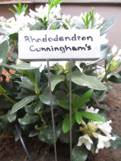 """Zinc Botanical Marker 21"""" Tall"""