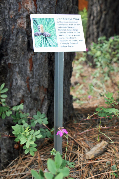 Large Dura-Last Botanical Sign