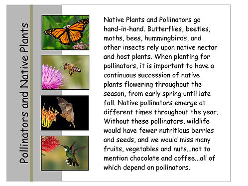 "Simple Sign 12"" x 14"" Pollinators"