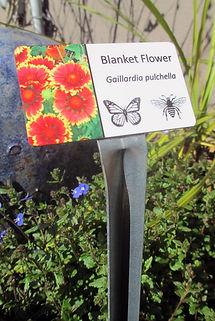 2 x 3.5 dura last botanical.jpg