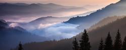 Scotts Valley2