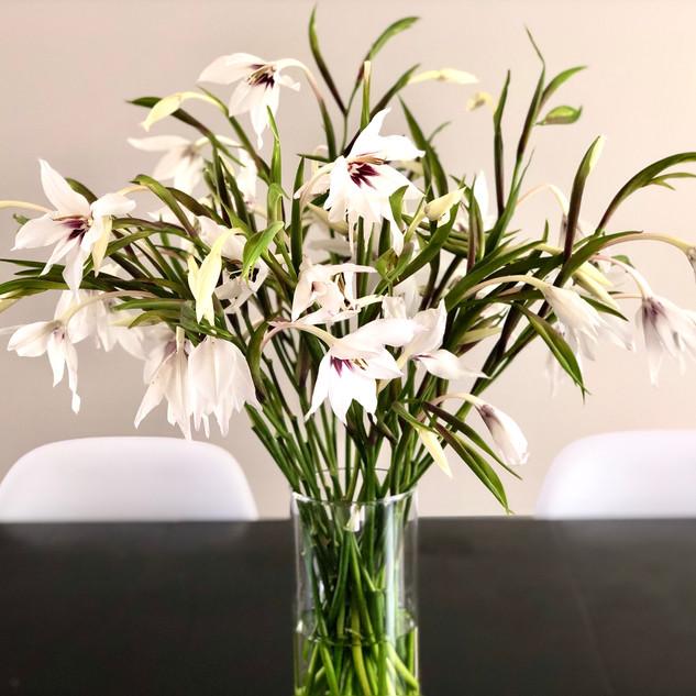Simplicity of Beauty Bouquet