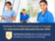 Internatinally Educated Nurses in Canada