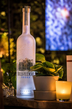 Belvedere Vel'Or7