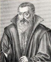 Painting of Johannes Sturm