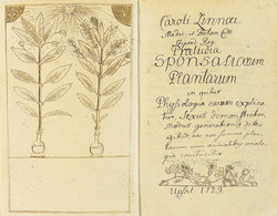 Praeludia Sponsaliorum Plantarum