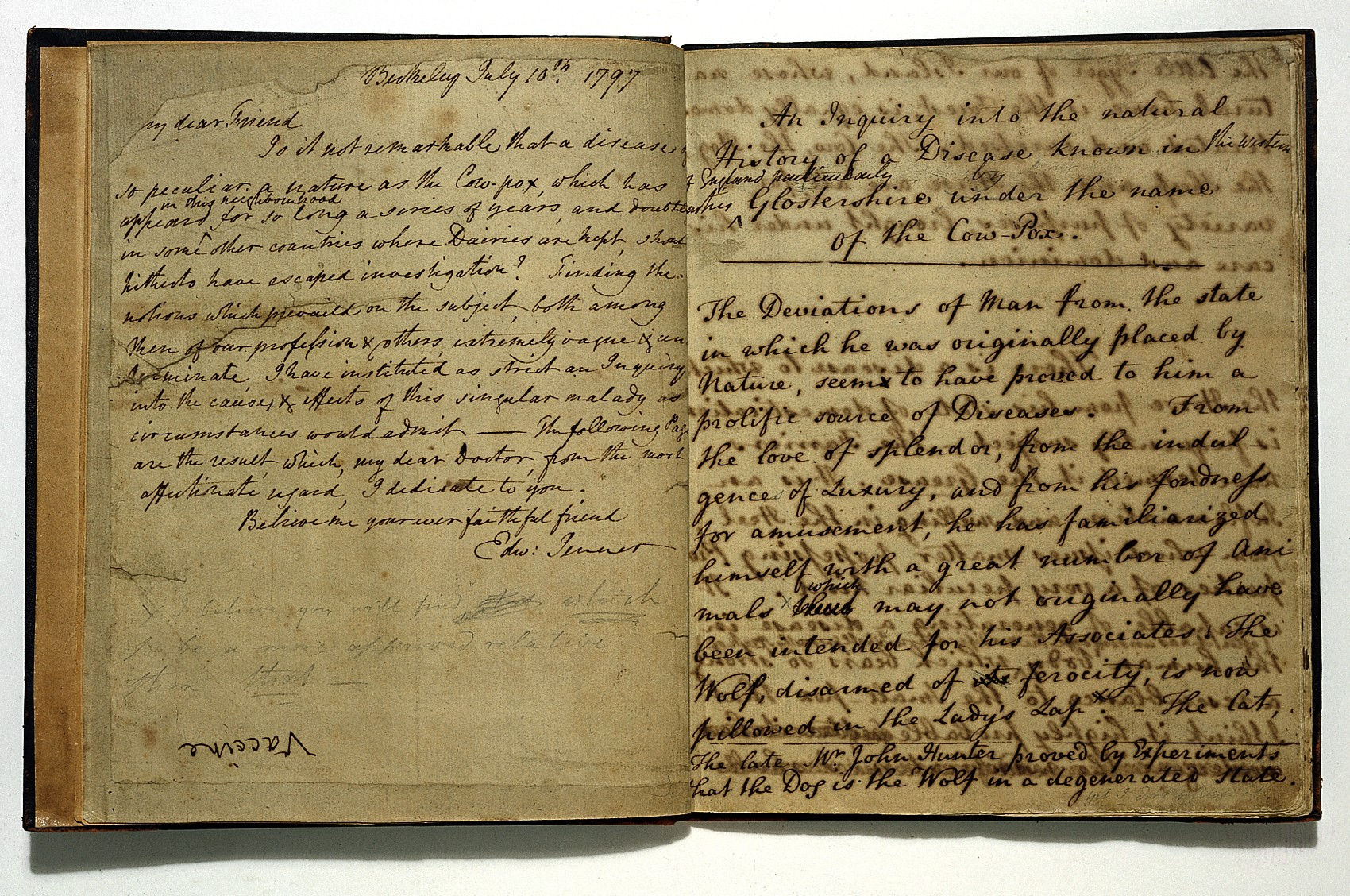 Manuscript of Edward Jenner