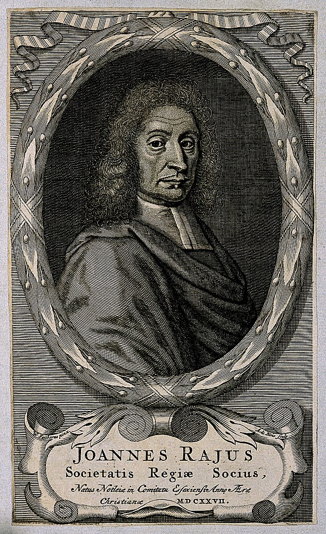 John Ray Engraving