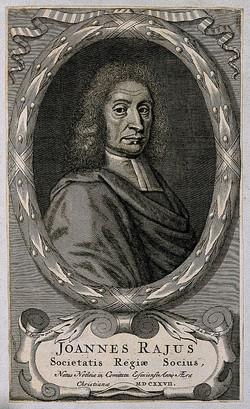 John Ray Engraving