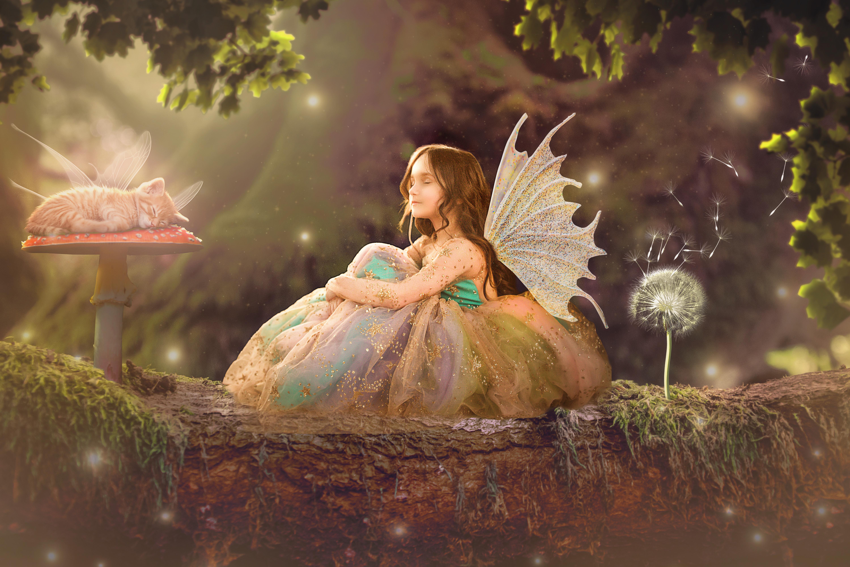 Fairy Sessions (FLASH SALE)