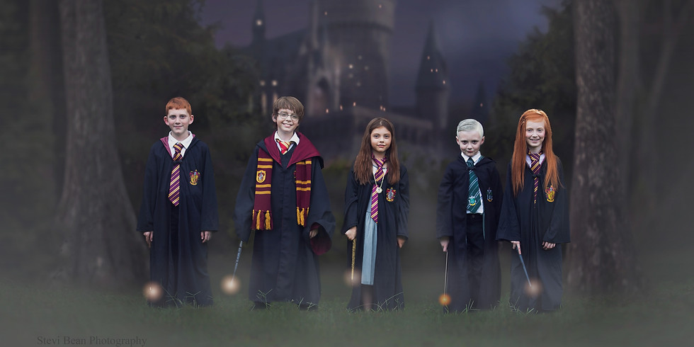 Wizarding World Minis