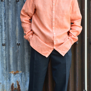STYLE SAMPLE NO,250