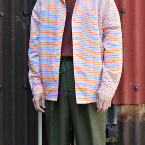 STYLE SAMPLE NO,238
