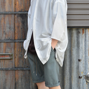 STYLE SAMPLE NO,245