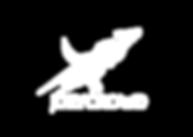 White- logo.png