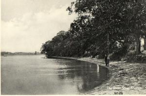 stutton-shore-river-stour1
