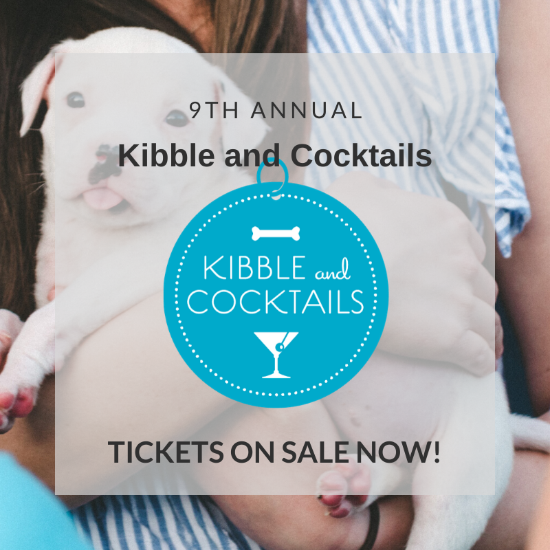 Kibble and Cocktails Social