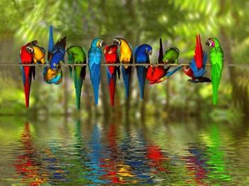 Happy November in Sunny Rainy Blowy Southern Costa Rica