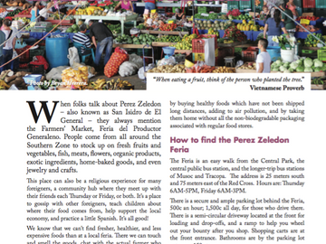 From Farm to Fork: The Famous Feria of Perez Zeledon