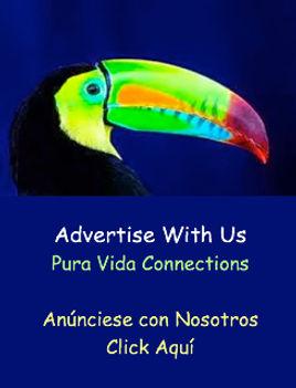 pvc-anuncio-244x320.jpg