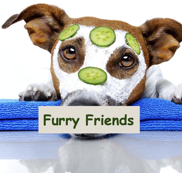 FurryFriends.jpg