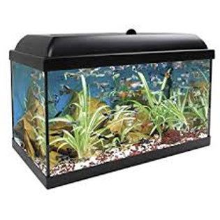 Acuario Kit Aqualed Pro con filtro 25L