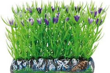 Planta Salvacría Limnofila Plástico