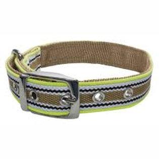 Collar XT-Dog Traffic M