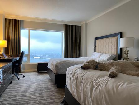 バンクーバーのホテルの贅沢。枕の数はいくつ?
