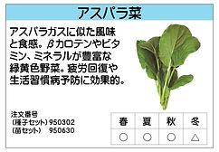 アスパラ菜 .jpg