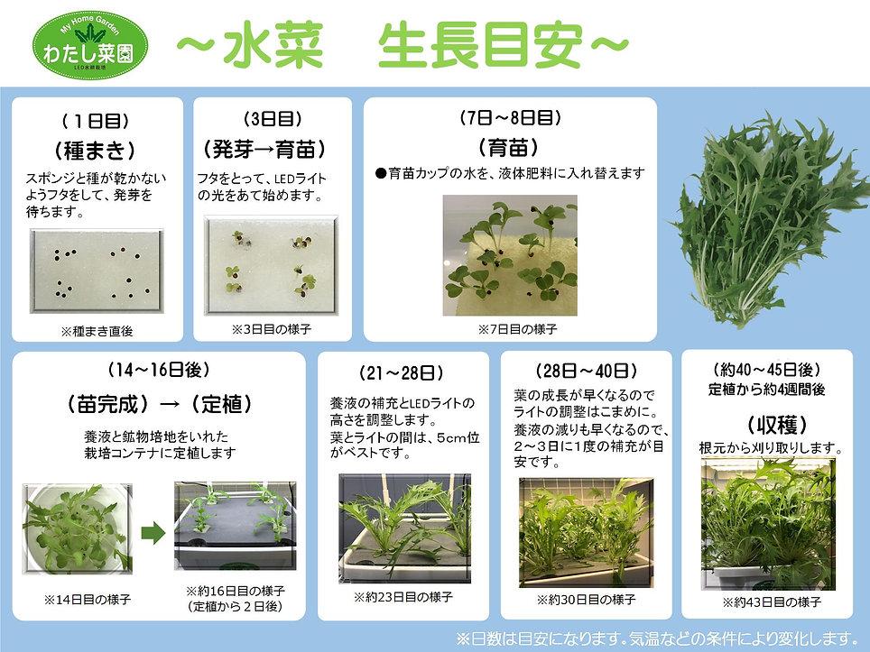 水菜生長目安.jpg