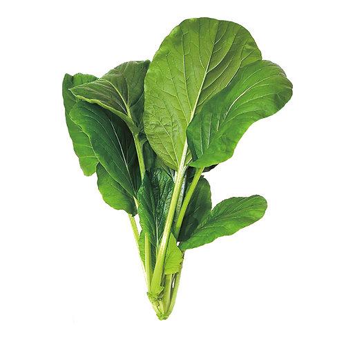 種子セット(アスパラ菜)