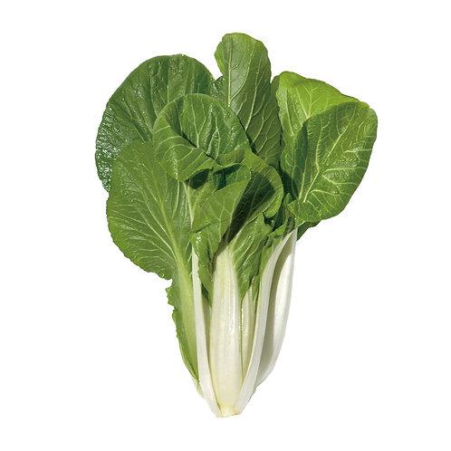 種子セット(しろ菜)【レンタルコース用】