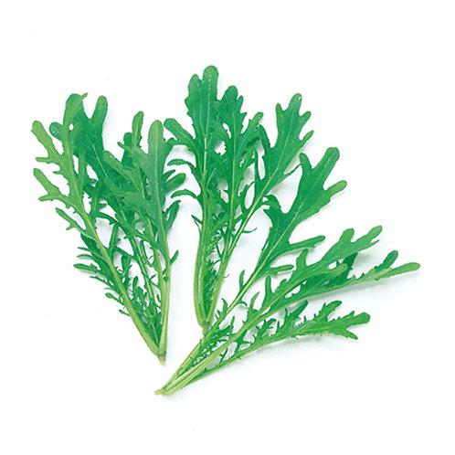 種子セット(グリーンからし菜)【レンタルコース用】