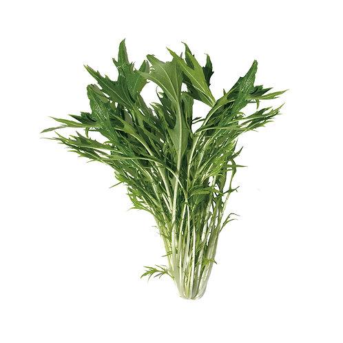 種子セット(水菜)【レンタルコース用】