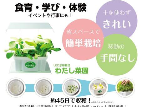 わたし菜園レンタルセット発売開始!