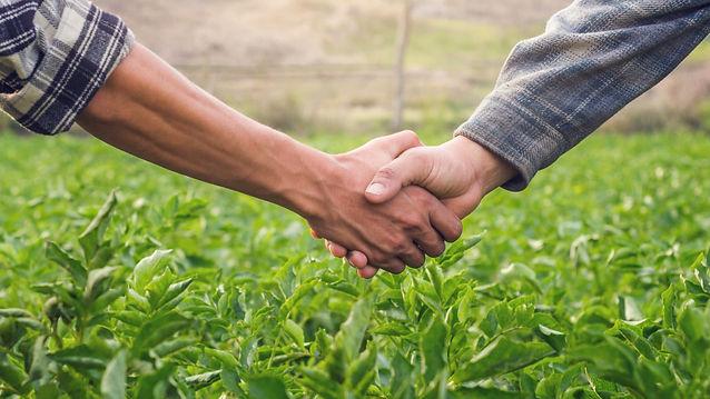 Farmer Handshake_597047831.jpg