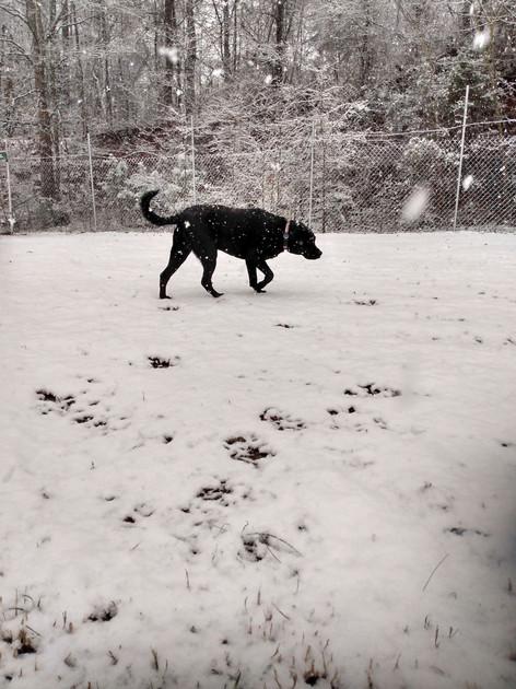bubbie snow.jpg