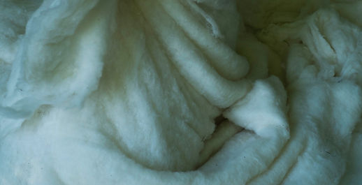 FELT ME wool detail M Trigg.jpg