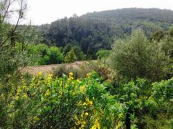 Gites du Raby 2, Provence