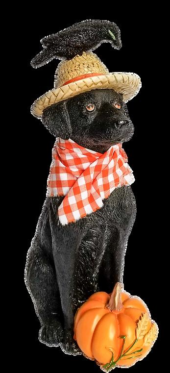 Halloween Dog.png