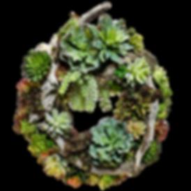 Artifical Succulent Arrangement