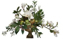 Magnolial