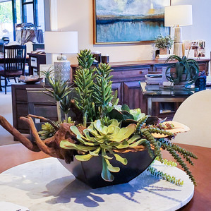 E. P succulent arr.jpg