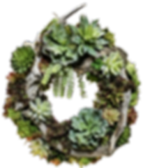 Succulent Wreath_edited.png